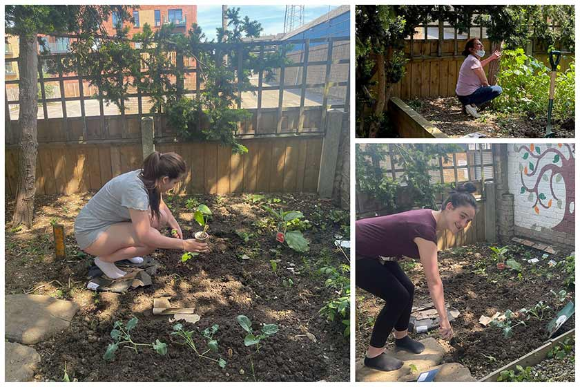 Residents preparing their entry for the Ready Steady Grow gardening competition