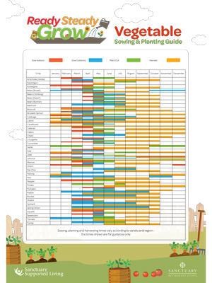 Vegetable sowing and planting guide